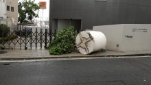 台風は大丈夫でしたか?日頃の備えが大切ですね。