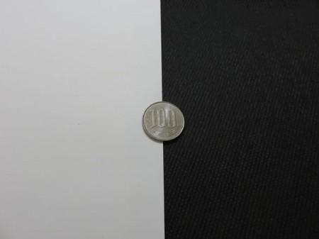白と黒の背景の真ん中に載せて撮影した100円玉